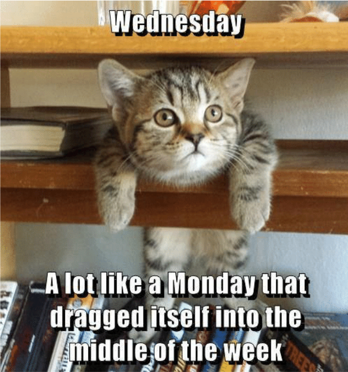 wednesday-a-lot-like-a-monday-that-dragged-itself-inn-23457521.png