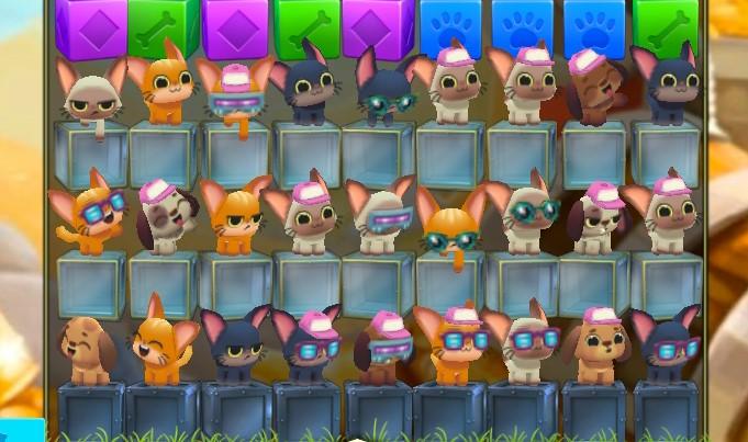 many Pets.jpg