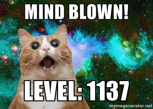 Mind Blown Cat.jpg