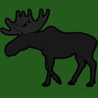 Kabboroo