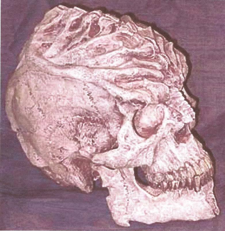 GreyZonKlingonSkull.jpg