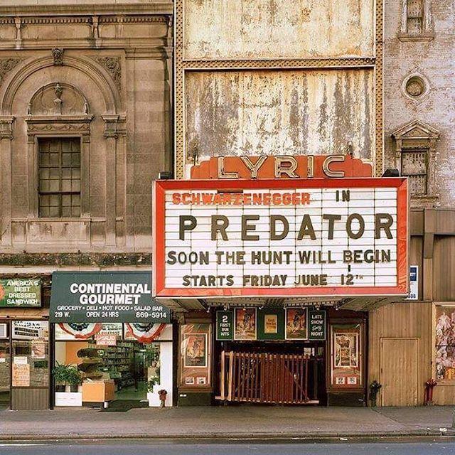 Predator-Marque.jpg