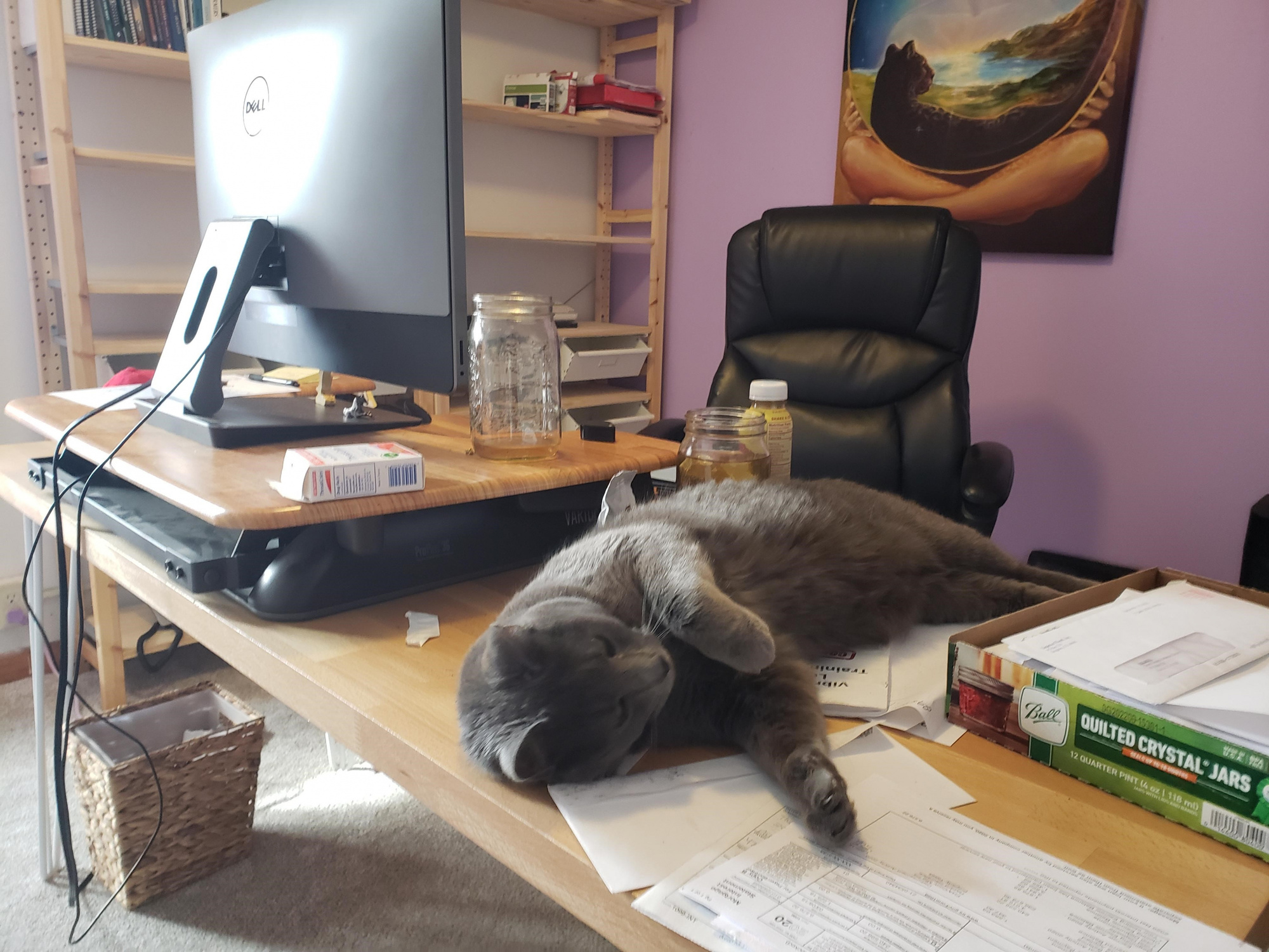 little bear on the desk.jpg