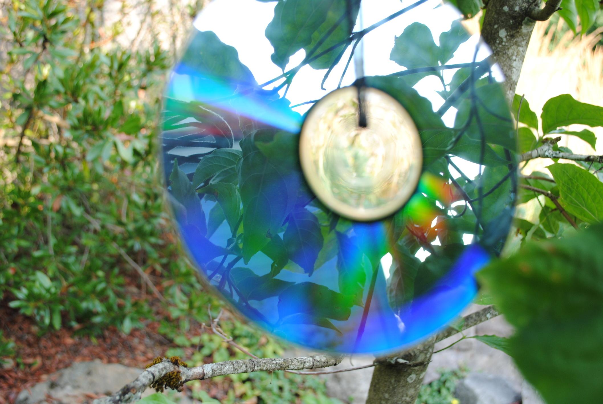 CD of Silence Summer 2018.JPG