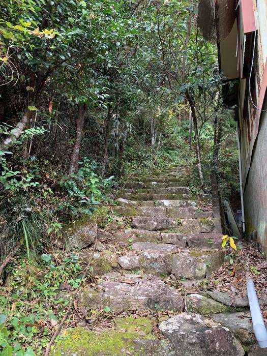 003家屋から階段を上がる.jpg