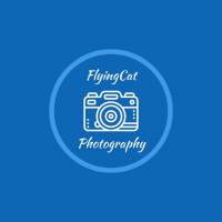 FlyingCatPro