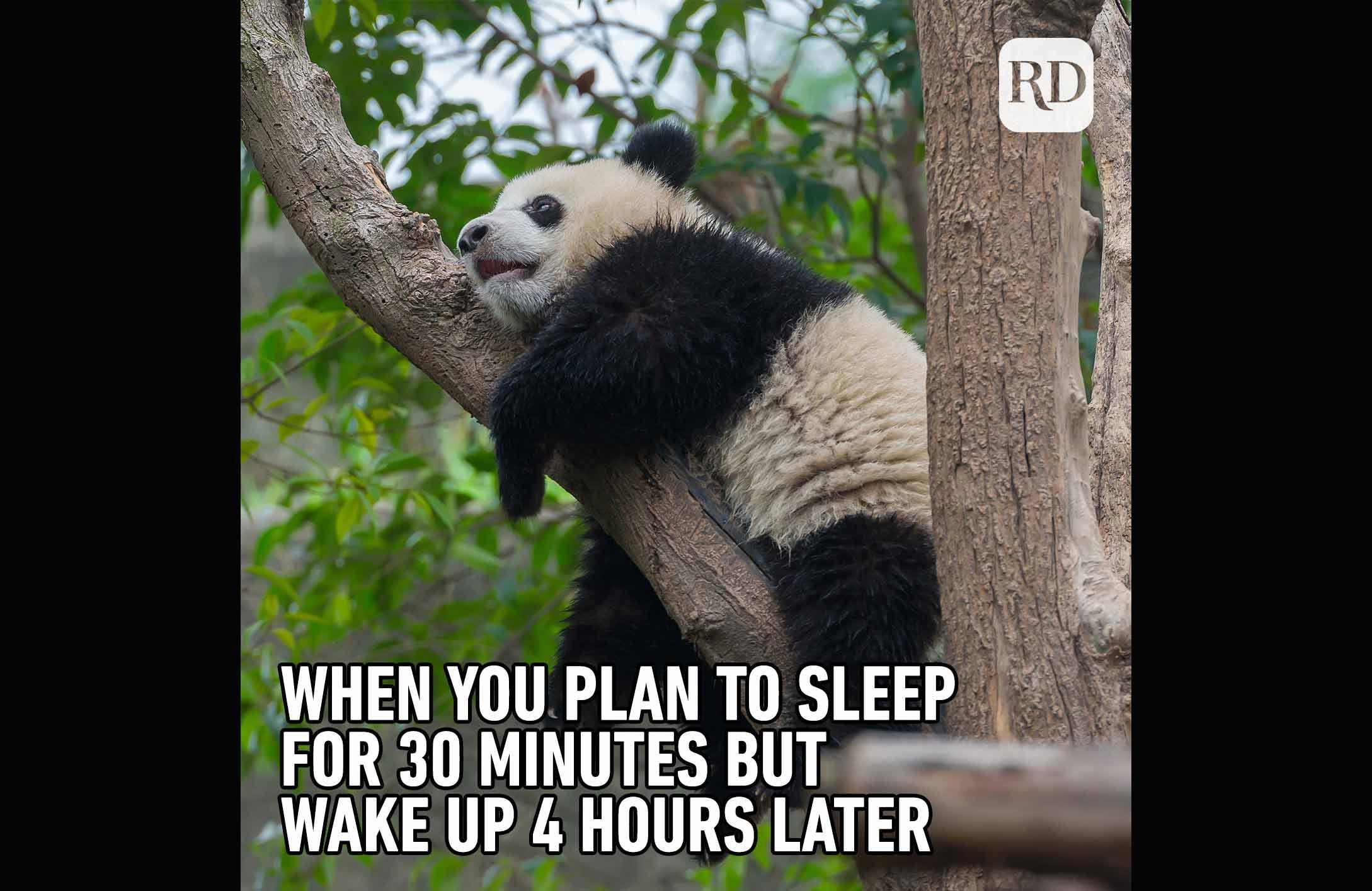 04_4-Hours-Later-Meme-770.jpg
