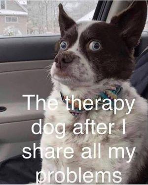dogtherapist.jpg