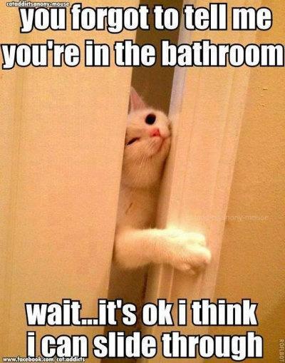 BathroomSm.jpg