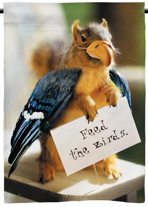 Feed_the_Bird_Garden_Flag__57799.1436906016.500.750.jpg