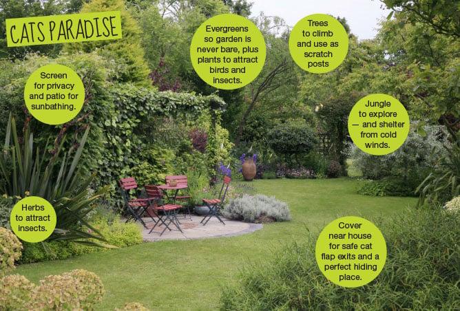 cats-paradise-garden.jpg