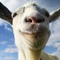 GoatForHire