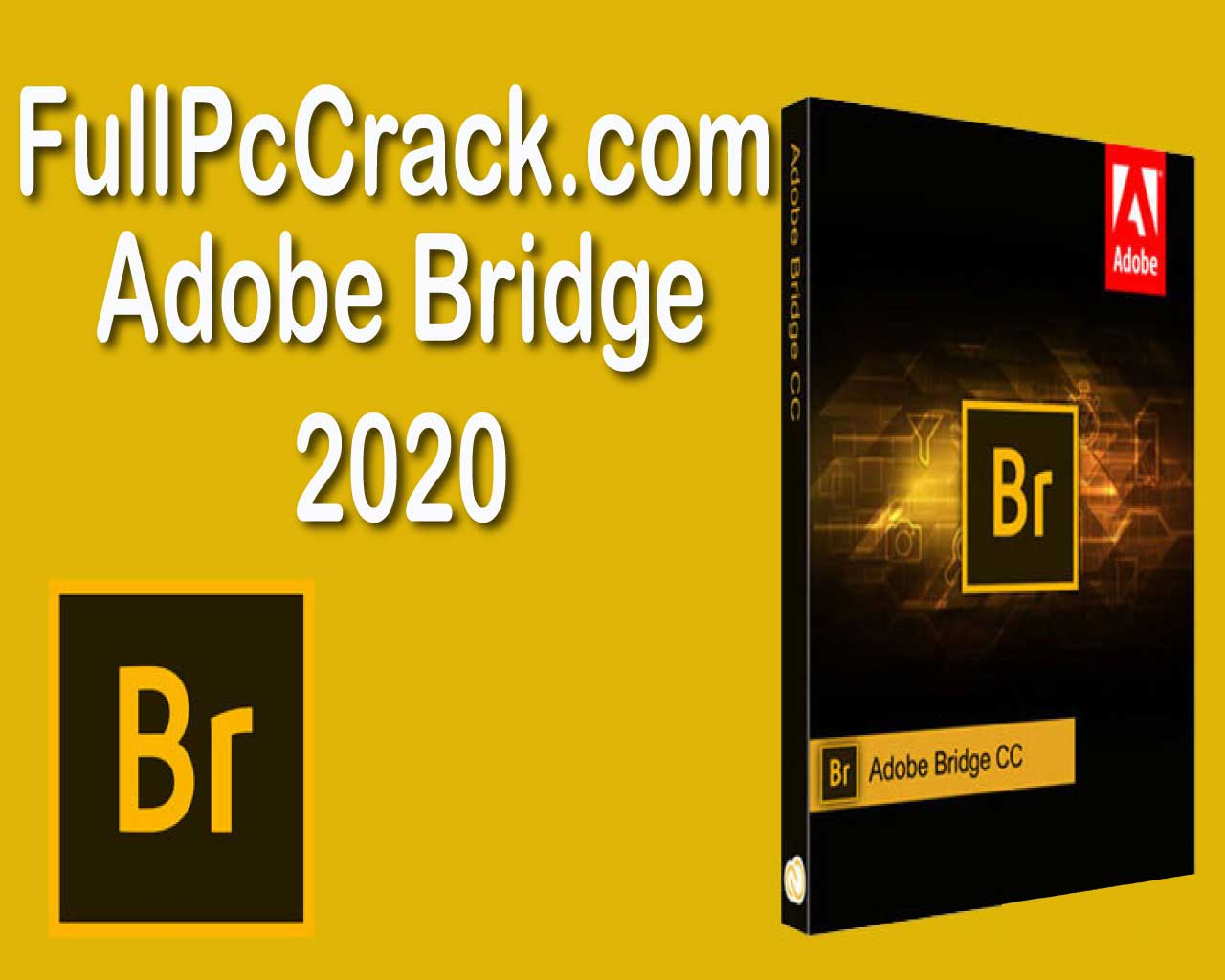 adobe-bridge-edit-1.jpg