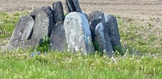 墓石2.JPG