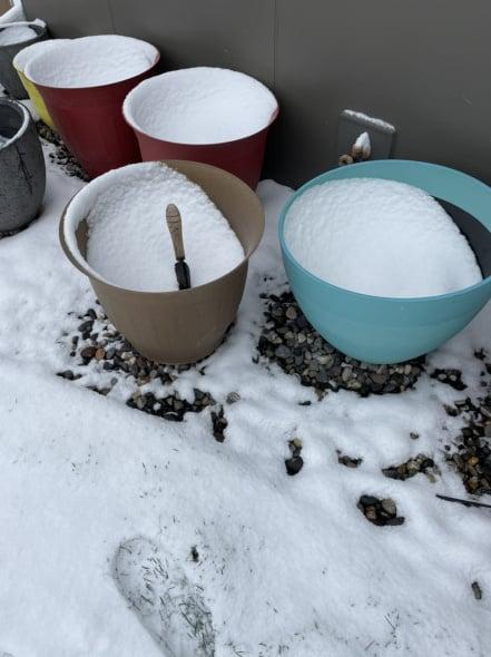 Flower pots full of snow.jpg