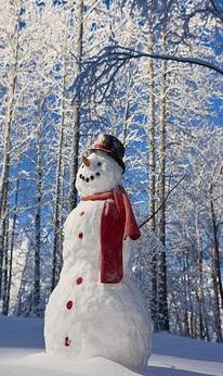 snowmanwearingscarfandhat.png