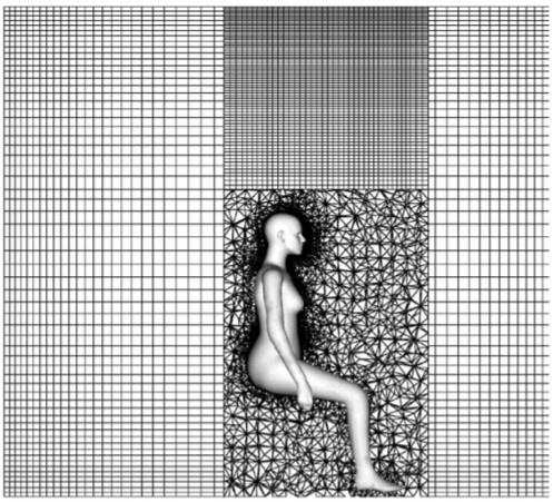 hybrid mesh.jpg