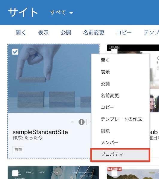 site007.jpg
