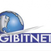 Gitronic - Gibitnet