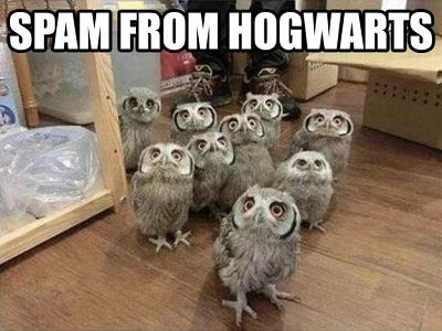 Spam hogwarts_meme.jpg