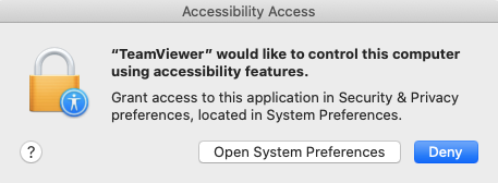 Allow Accessibility.png