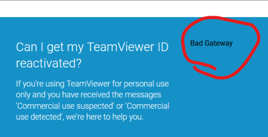 TeamViewer.Bad.Gateway.png