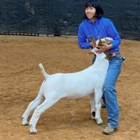 goat1master