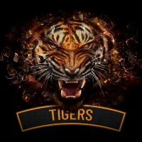 Tiger1zerobravo