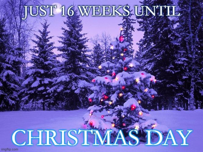 16 weeks.jpg
